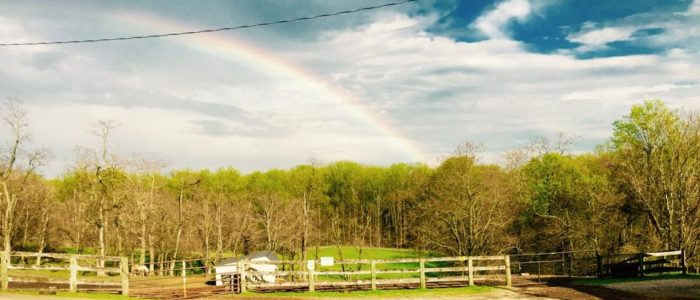Graham Equestrian Center is located within beautiful Gunpowder Falls State Park